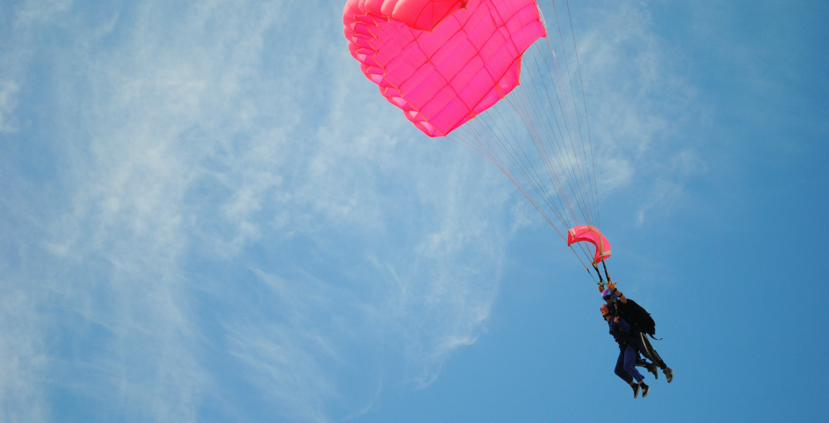 Tandem skydivers with a pink parachute canopy